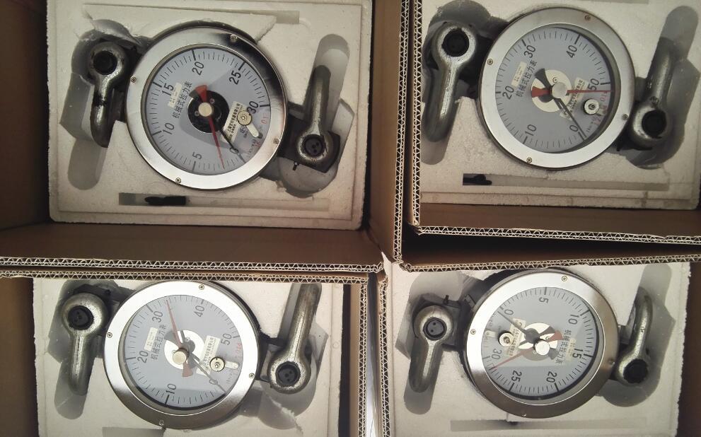机械式拉力表160KN 180KN-水产品重量测力计